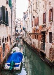 Декор Береза-керамика Азалия Венеция 6 синий 25x35