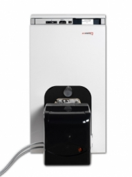 Котел газовый Protherm Бизон 40 NL 38 кВт
